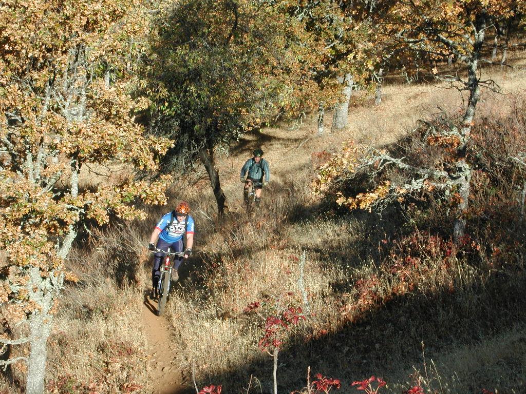 Trail Pics-strange-002.jpg