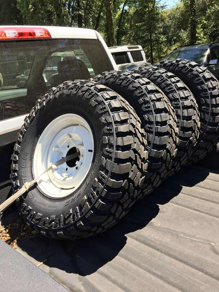 NorCal Rigs that Tacomas Envy-stt_pros-mounted.jpg
