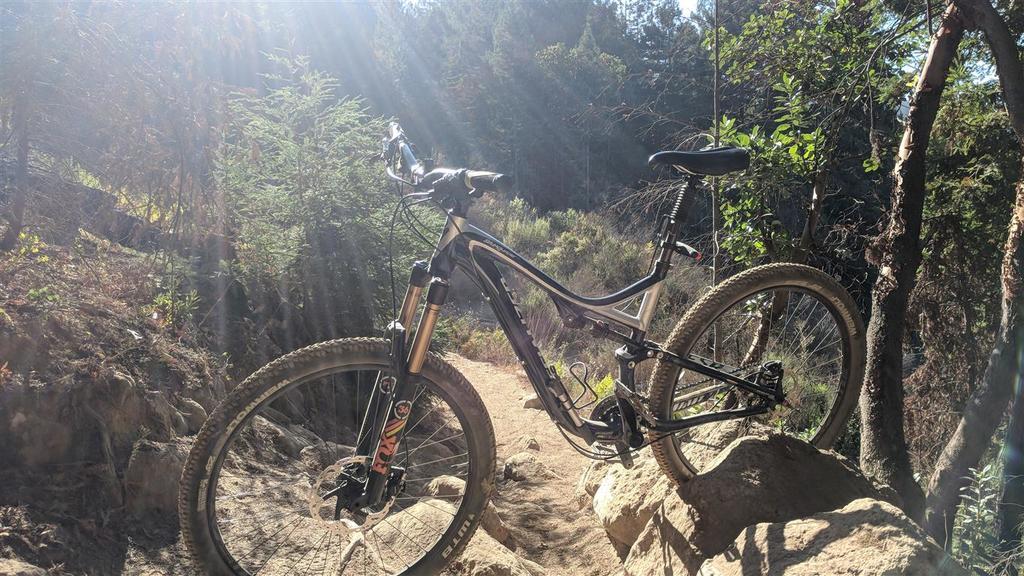 New to the forum, new (again) to biking-stumpy-medium-.jpg