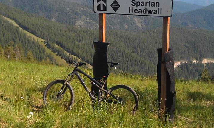 Bike + trail marker pics-stumpy1.jpg