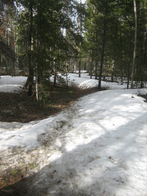 Sourdough trail conditions-sugar-mag.jpg