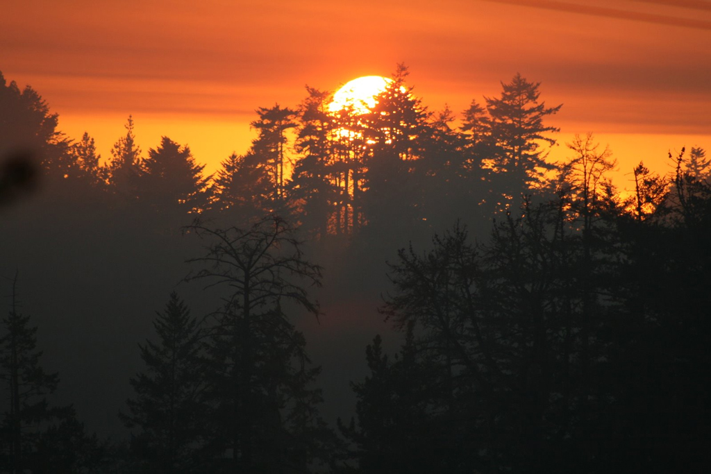 Assignment: Norcal Sunset Photos-sun.jpg