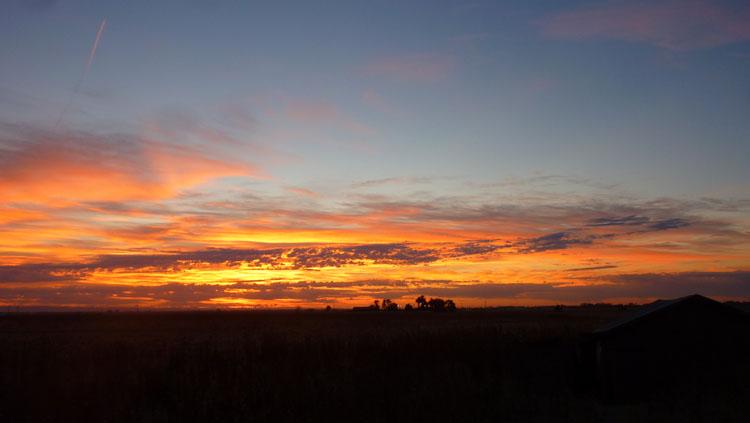 Assignment: Norcal Sunset Photos-sunrise.jpg