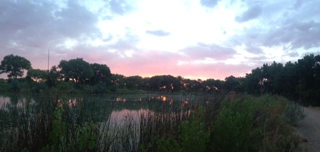 Sunsets...-sunset-tingley.jpg