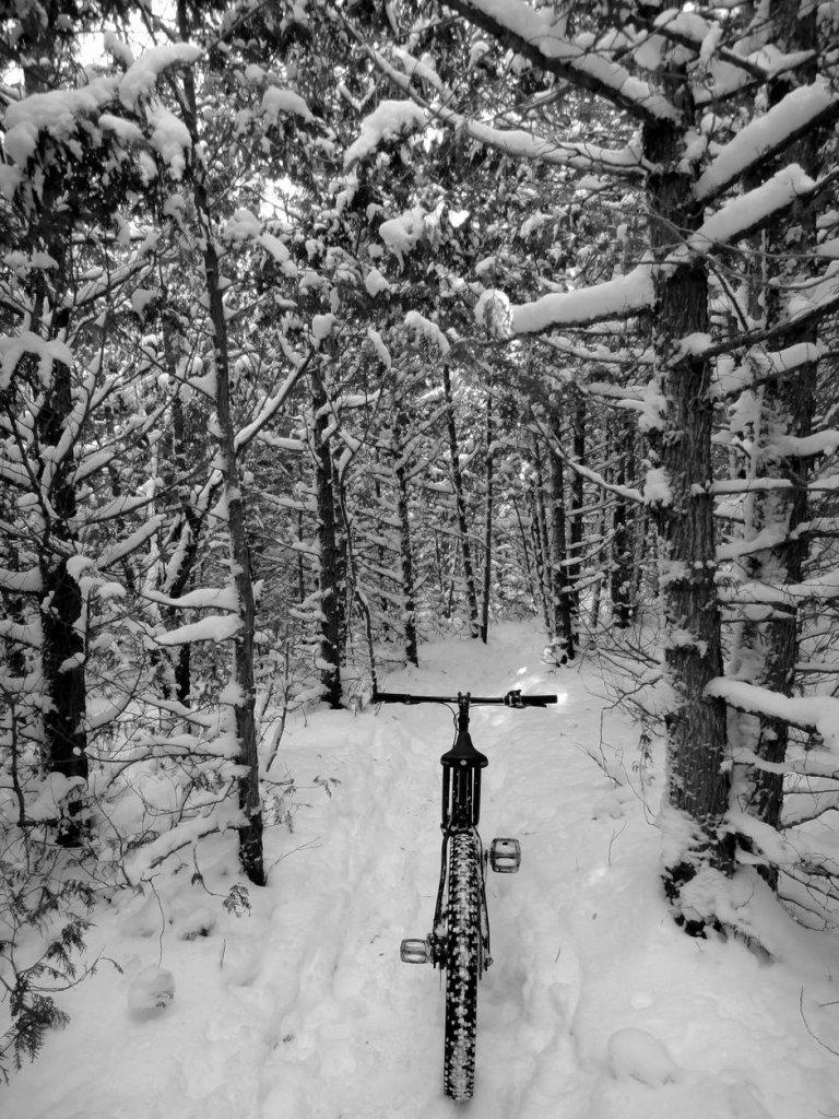 Totally Unofficial Snow Biking 2014/15 Thread-super_bowl_xlix-celebration-guelph_lake-020315-11.jpg