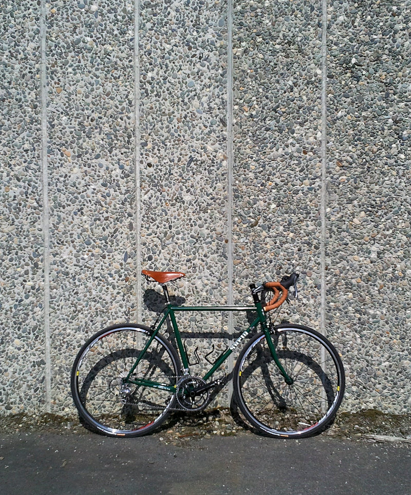 Pacer or Crosscheck-surly03.jpg