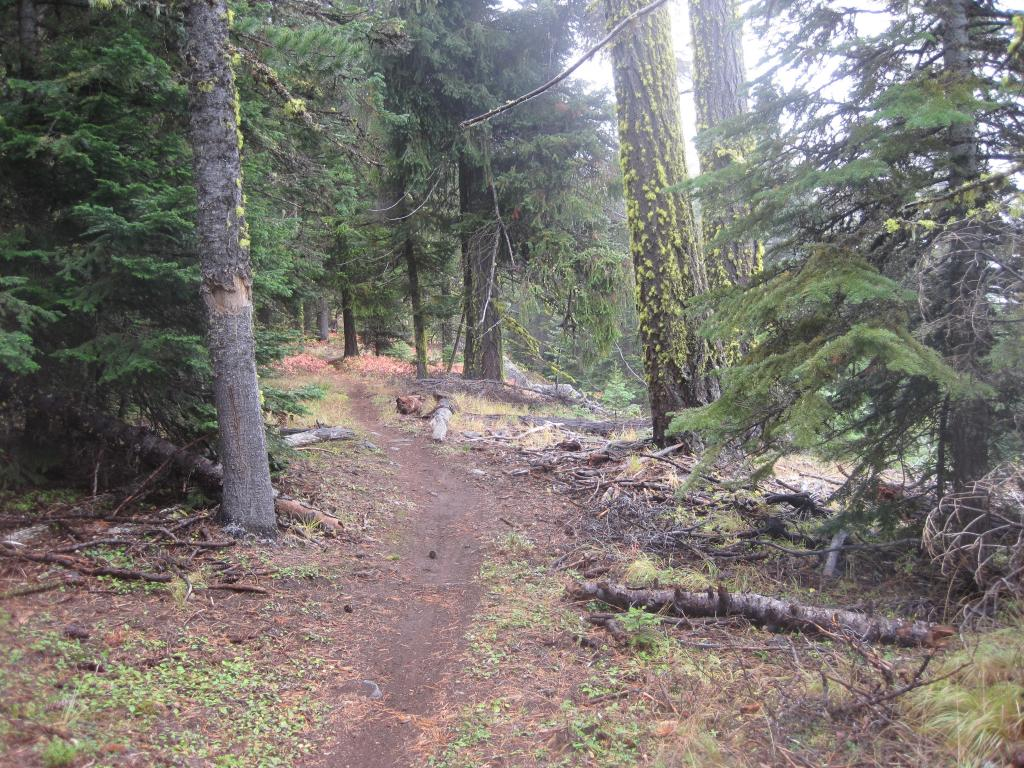 Winter is coming...... get those 44rd rides in NOW!-sweet-single-track-15-mile-tr.jpg
