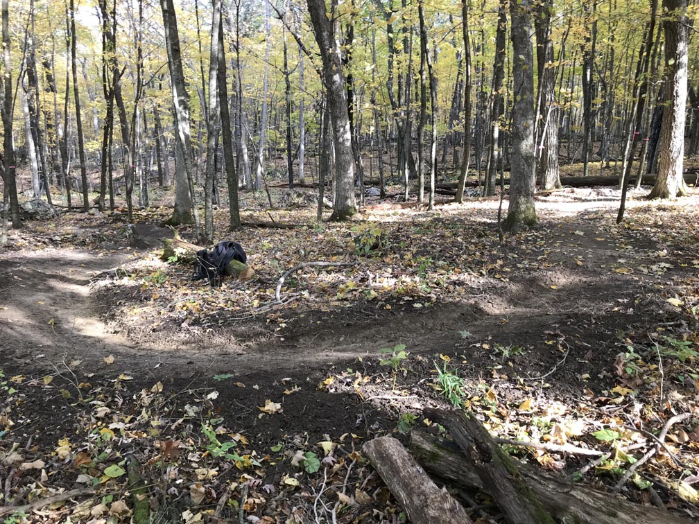 Show a Pic of Your In-process / Recently Finished Trail-switchback16oct2019.jpg