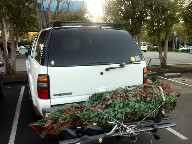OT: What's in your driveway?-tahoe-002.jpg