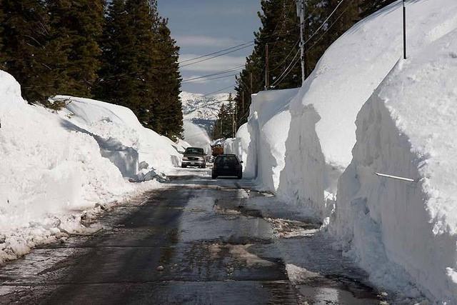 Snow day-tahoe.jpg