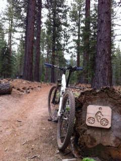 Name:  tahoe powerline trail.JPG