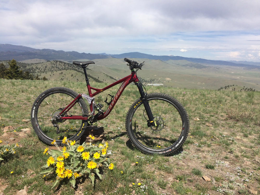 New innovative suspension from Tantrum Cycles. Any thoughts...-tant-1.jpg