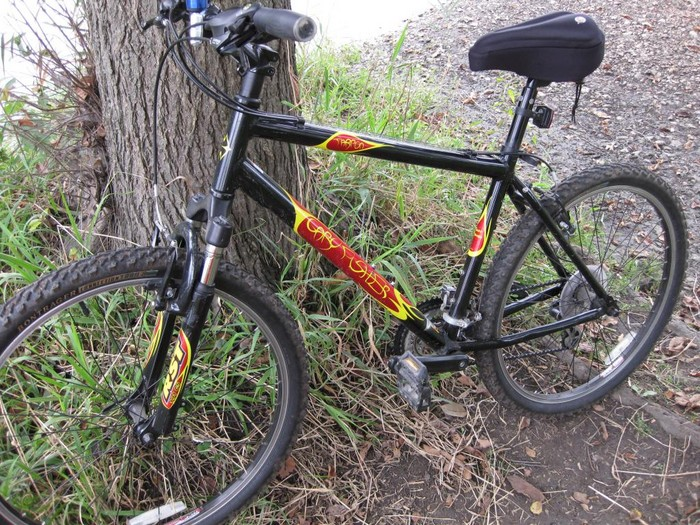 What was your first mountain bike?-tarpon.jpg