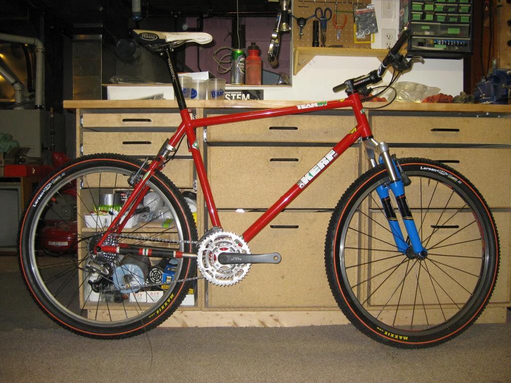 My Dream Bike...18 years later-teamst.jpg