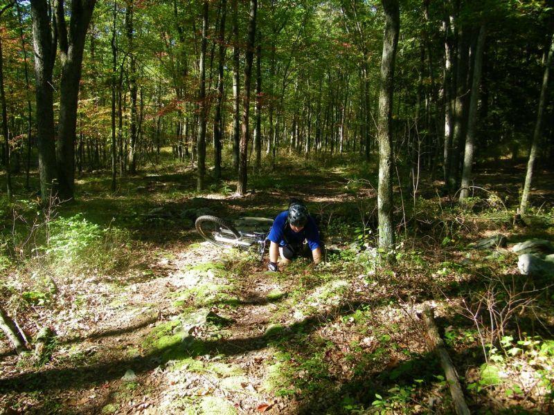 Roaring Creek With Mini & The Boy-th.jpg