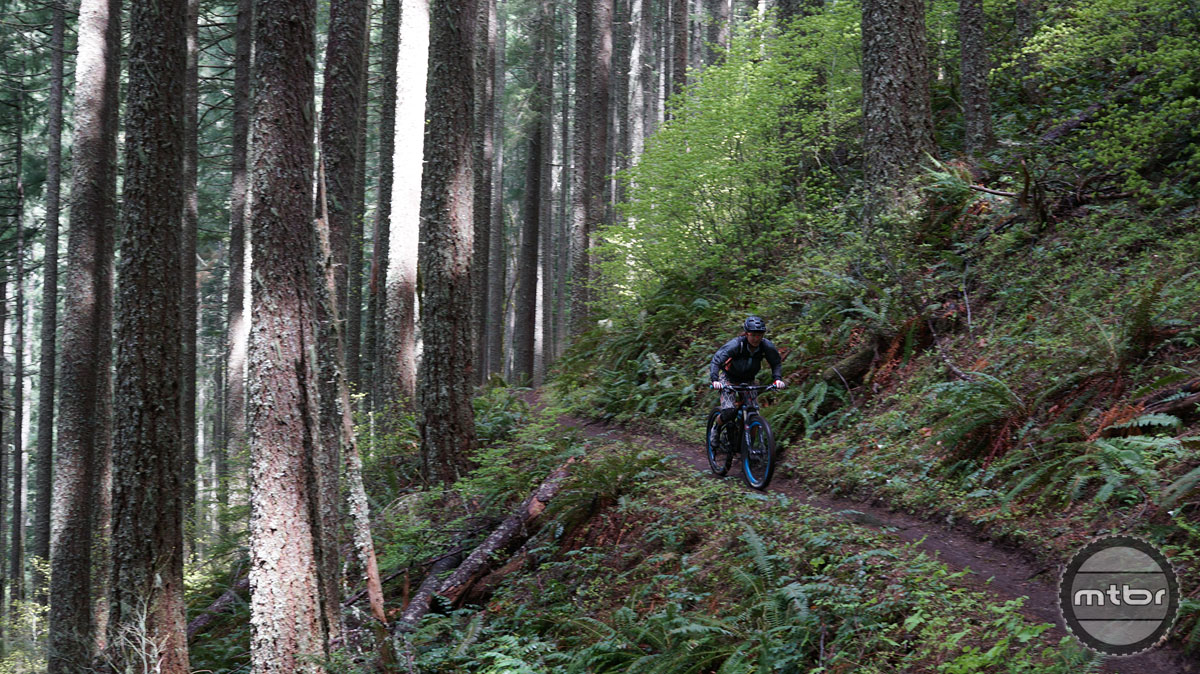 Historic benchcut trails are what make Oakridge unique. Their historic significance of servicing fire lookouts has not only helped create a vast network of singletrack but their contour nature makes them sustainable and super fun for bikes.