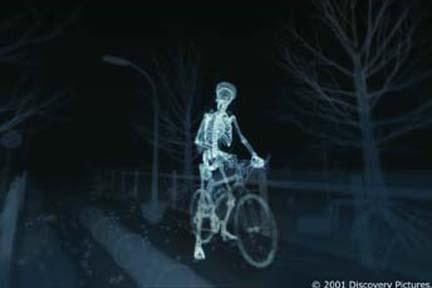 Name:  the-human-body-19.jpg Views: 157 Size:  14.6 KB