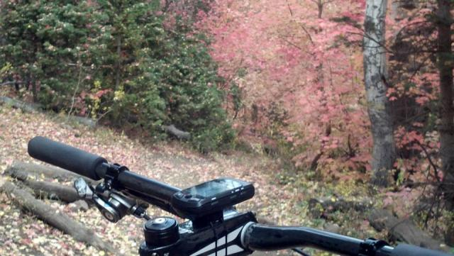 2013 Giant Anthem Advanced X29er 0 Ride Report-way-forward.jpg