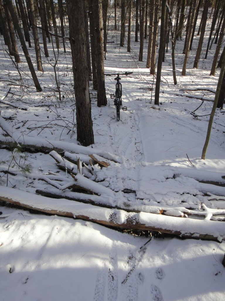 Totally Unofficial Snow Biking 2014/15 Thread-the_white_stuff_is_back_at_puslinch_tract-121214-06.jpg