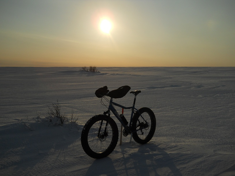 Daily fatbike pic thread-theres-trail-here-somewhere.jpg