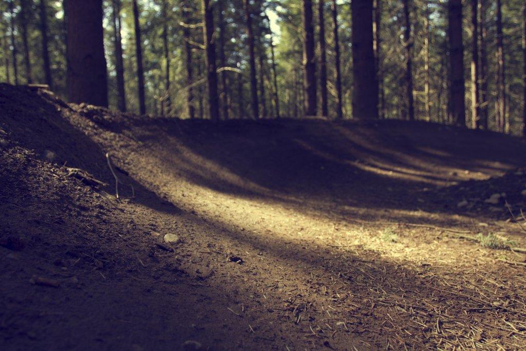 Summit Ridge Freeride Park is running really good!-thumbnail-2.jpg