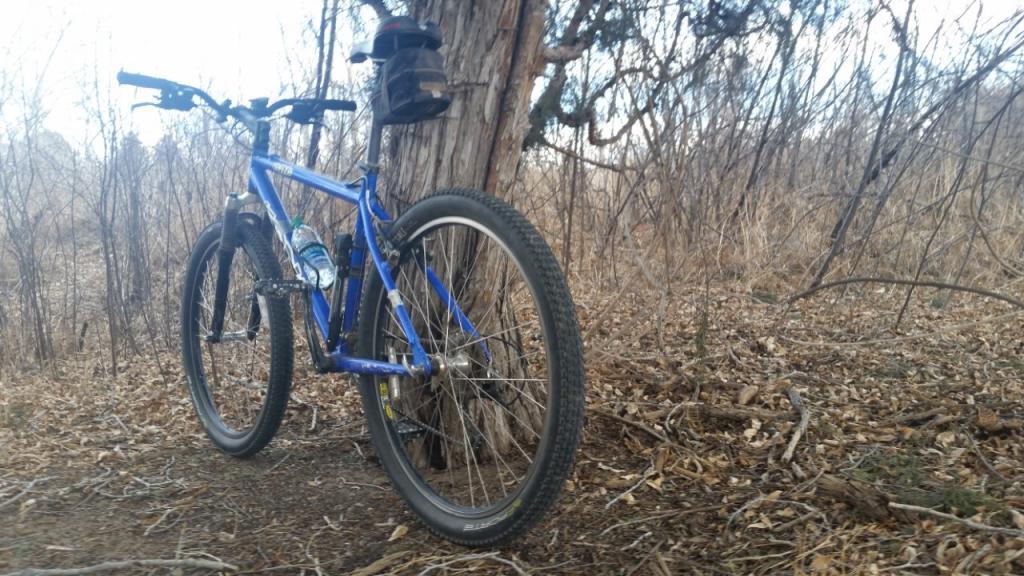 Old riders, old bikes.-thumbnail_20170123_145108_1485247149320-1-.jpg