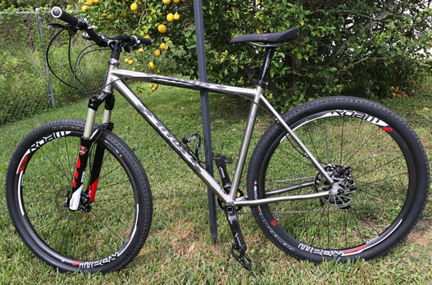 Let's See Those 29er Rigids!!-ti-hardtail.jpg
