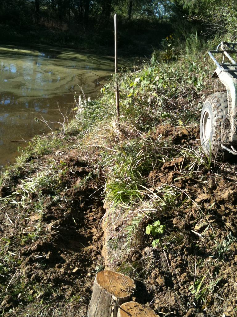 Flat land trails on my property-open to suggestions!-tide-wall-footer-1st-bridge-003.jpg