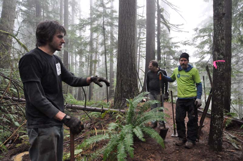 Tiger Work Party report - with pics-tiger-mt-work-party-dec-2013-13.jpg