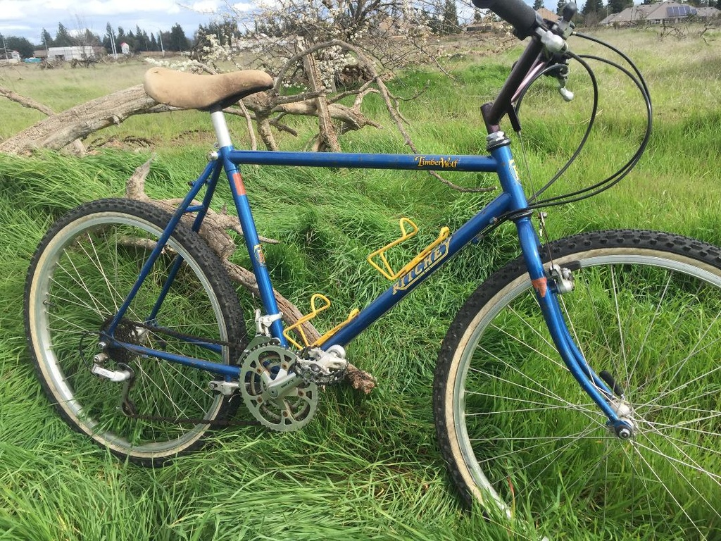 Official (Tom) Ritchey Picture Thread-timberwolf-drive-side.jpg