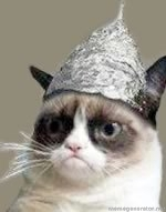Name:  tinfoil cat.jpg Views: 230 Size:  14.9 KB