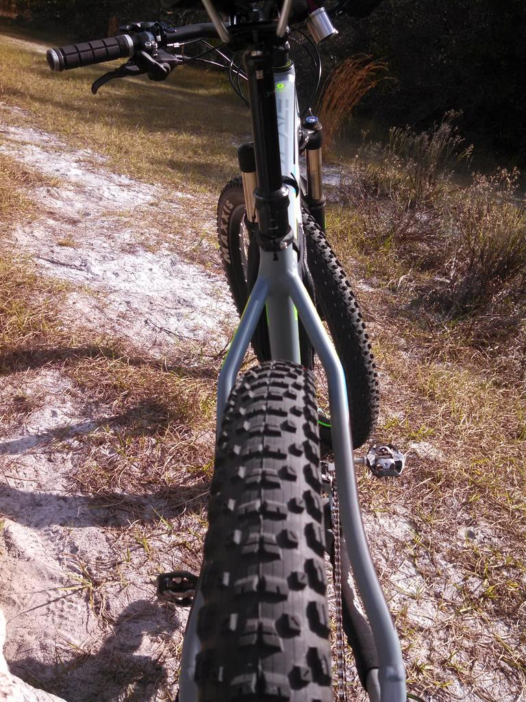 Anyone choosing to ride with tubes in the plus size?-tire-clearance.jpg