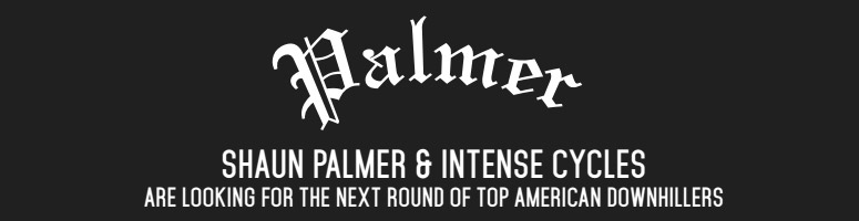 Palmer and Intense