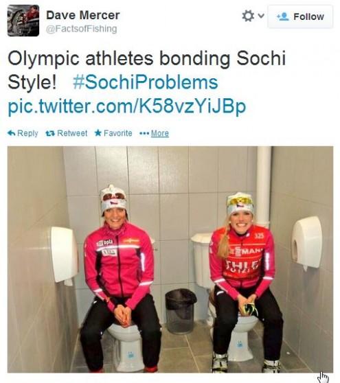 Olympics 2014!-toilet-495x558.jpg