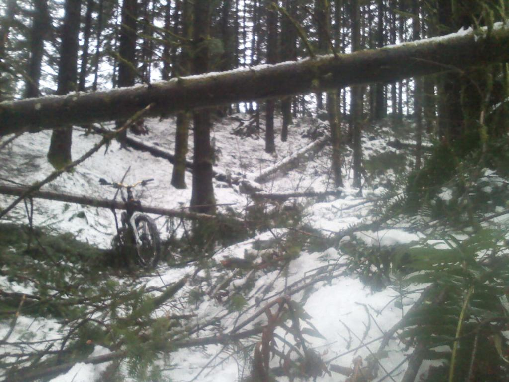 snow day pics-tokul_east01-20-12a.jpg