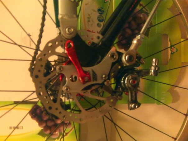Rear disk brake adapter-torque_rod_with_caliper.jpg