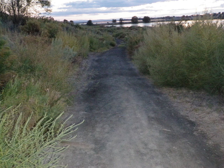 Moses Lake Area Trails-trail-just-north-park_a.jpg