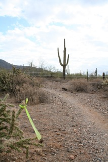 Name:  trail marker.jpg Views: 389 Size:  29.8 KB