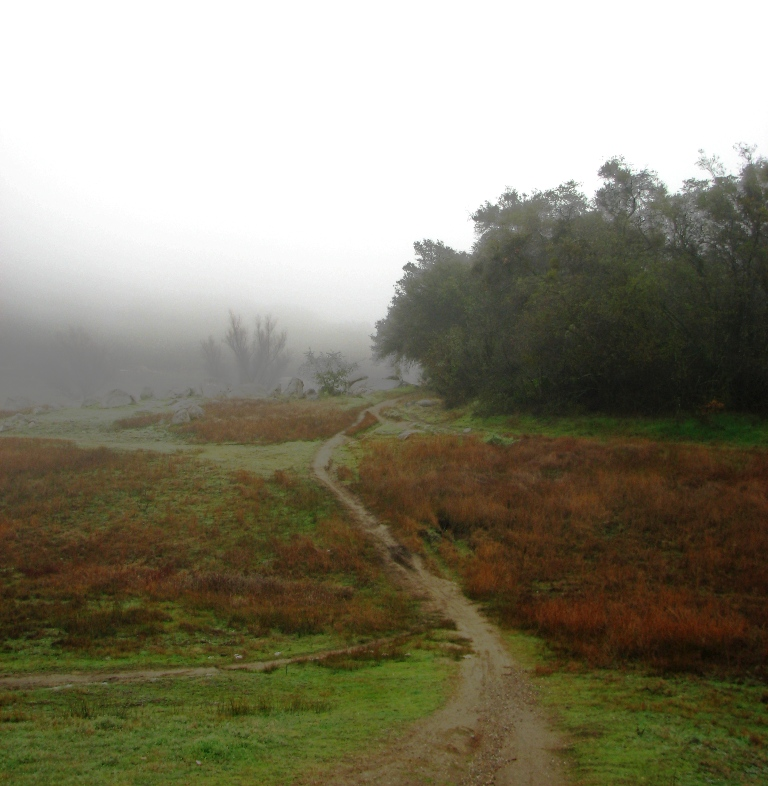 Picture Thread 2010-trail-nowhere.jpg