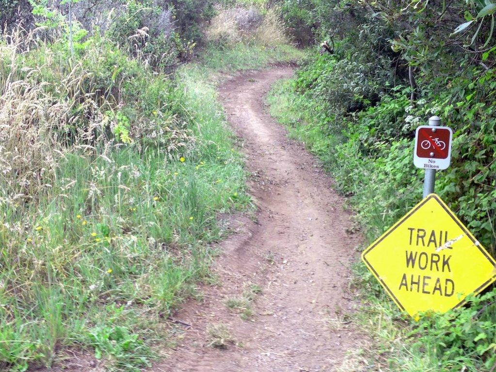 Ride report - Fog &  Flowers McGibber certified.-trail-work-1.jpg