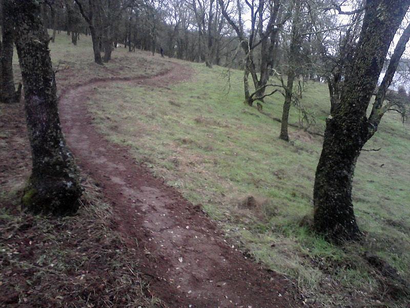 Photo Assignment: Rain-trail1.jpg