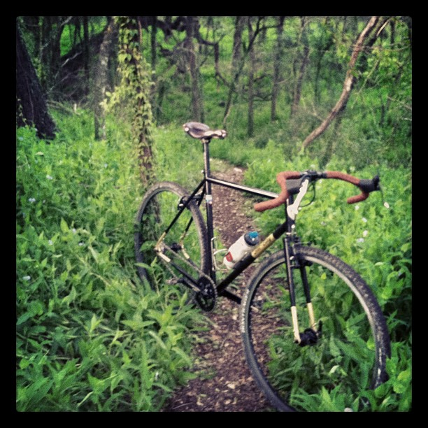 Cross Bikes on Singletrack - Post Your Photos-trail1.jpg