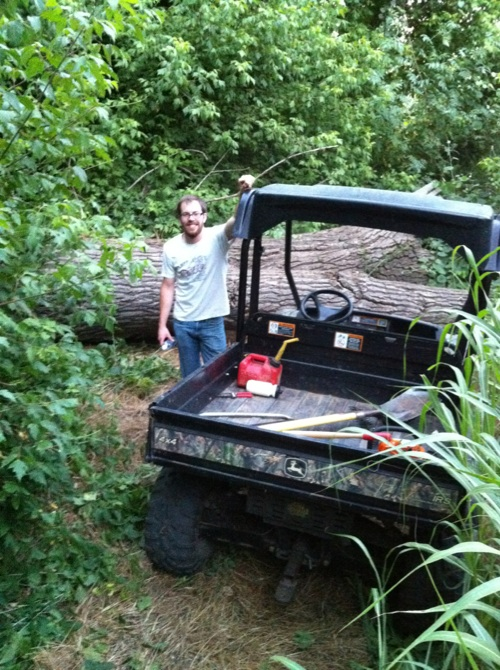 My Backyard Trail & Dealing with Soft Soil-trail1.jpg