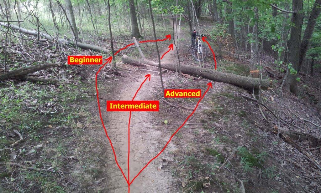 -trail1.jpg