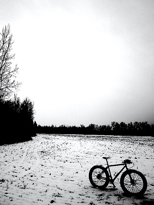 One picture, one line.  No whining. Something about YOUR last ride. [o]-trail4.jpg