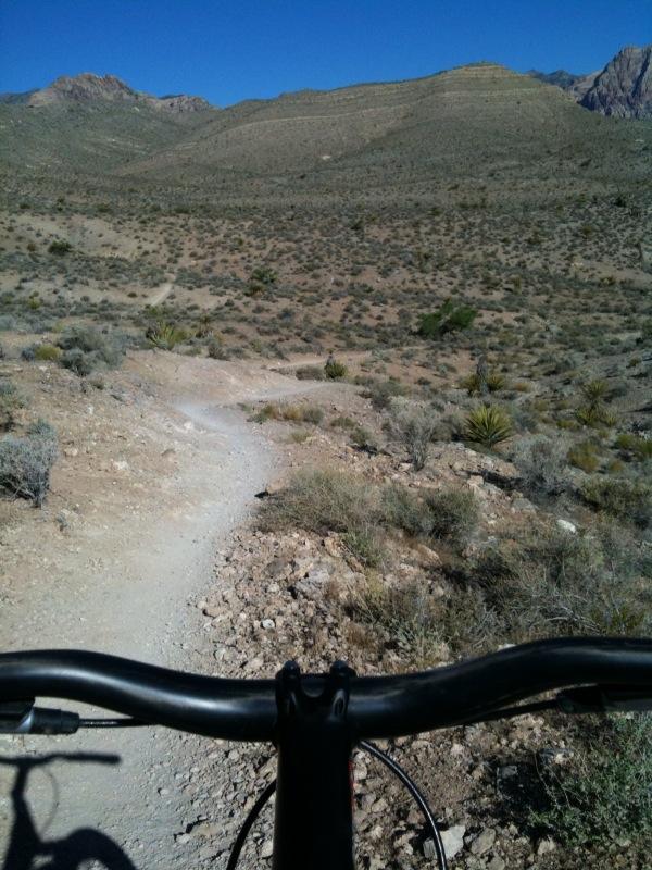 Viva Las Vegas!-trail5.jpg