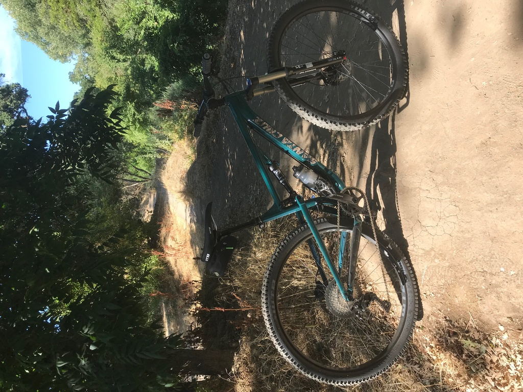 Post Pictures of your 29er-trail6.jpg