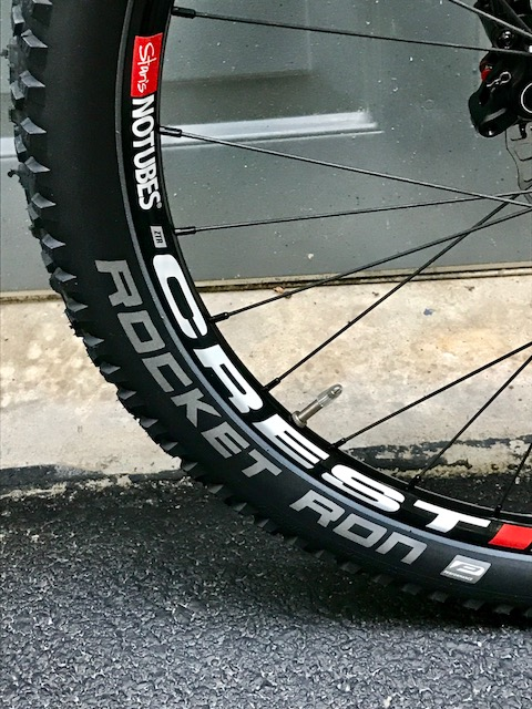 Trailcraft Pineridge 24 youth mtb review.-trailcraft-crest.jpg