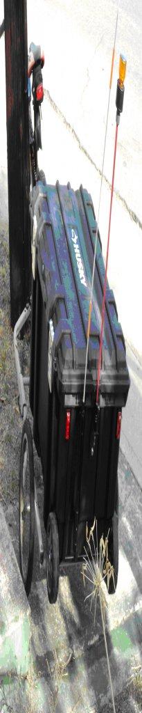 Bike Cargo Trailer Light Controller-trailer-rear.jpg