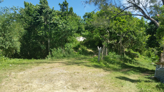 Jamaican Mountain Biking ... Quite an Experience!-trailhead-680.jpg